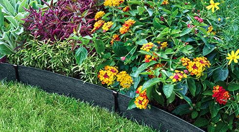 Give Your Garden an Edge