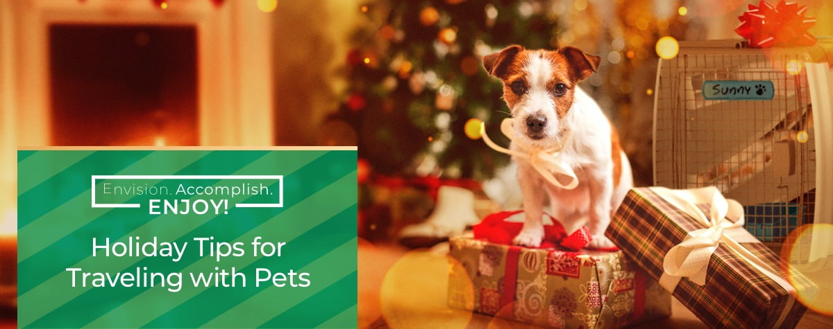 Holiday Tips for Traveling with Pets