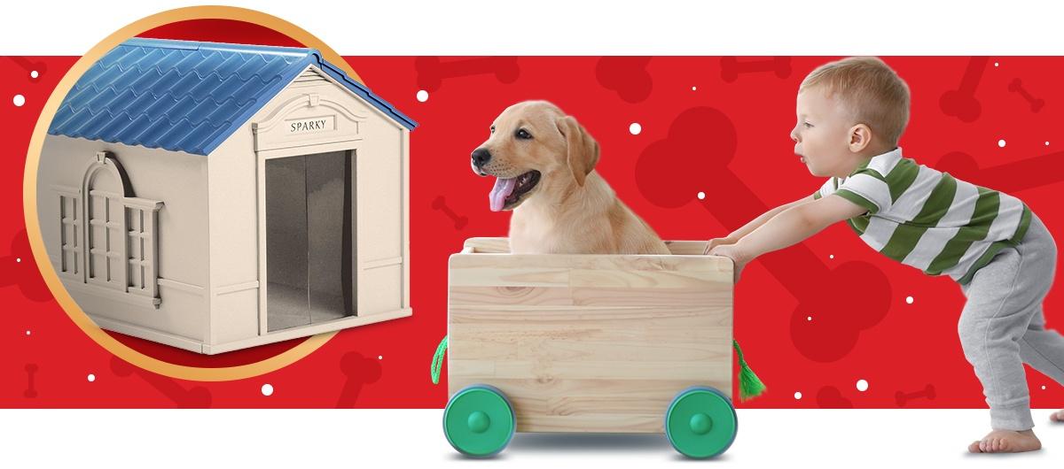 Puppy wagon and boy