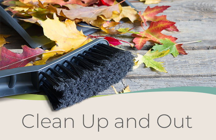 Clean Up and Out
